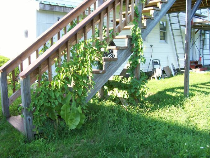 Porch 7-30